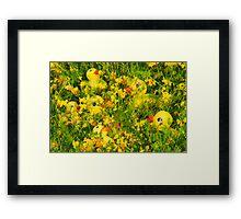 """Hide and Seek"" - rubber duckies hiding in the flowers Framed Print"