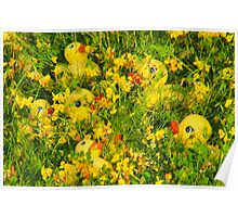 """Hide and Seek"" - rubber duckies hiding in the flowers Poster"