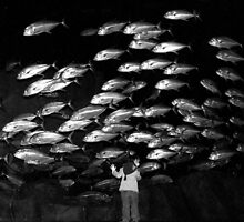 Paris - Maya and the silver fishes. by Jean-Luc Rollier