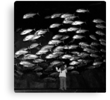 Paris - Maya and the silver fishes. Canvas Print
