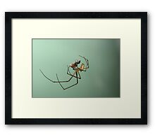 Xmas, time to wrap the presents. Framed Print