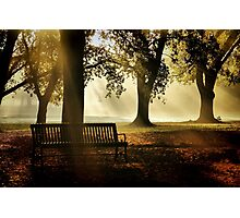Morning in the Park Photographic Print