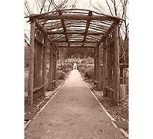 Pathway to Home, Port Arthur, Tasmaina Photographic Print
