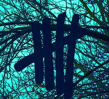 5 Seconds Of Summer 5sos Logo with Tree Background by Weyheycallie