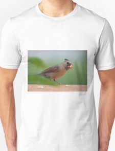 Female cardinal with seed Unisex T-Shirt