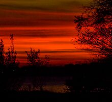 Sunset on Lake Ontario by Sue Ratcliffe