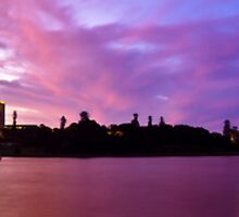Sydney Harbour - Farm Cove by Mathew Courtney