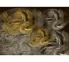 Choc Infussion Photographic Print
