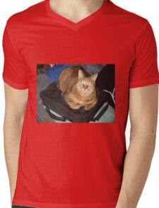 Sonic the Cat 1 Mens V-Neck T-Shirt