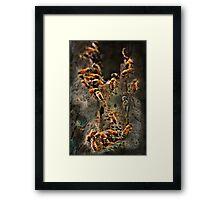 """""""The Sting..."""" Framed Print"""