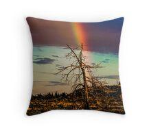 Rainbows-n-old Juniper Throw Pillow