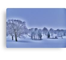 Frozen At Day Break ~ Peel Park ~ Canvas Print