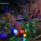 Christmas Star by Kevin Cotterell