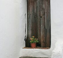 rustic door salares by Kent Tisher
