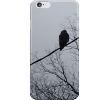 Hawk in silhouette iPhone Case/Skin