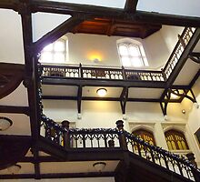 Grand Gothic Staircase by Meladana