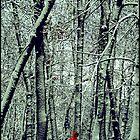 Man in red jacket  by Iuliia Dumnova