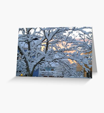 My Snow Covered Yard Greeting Card