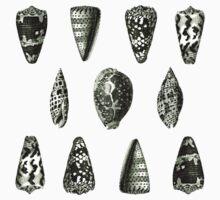 Vintage Seashells One Piece - Short Sleeve