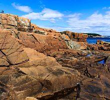 Rugged Maine Coast Acadia National Park by bengraham