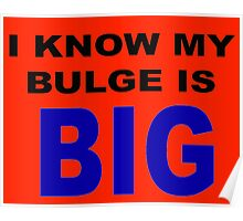 I know my bulge is big Poster
