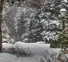 Wonderful Winter Wonderland by Monica M. Scanlan
