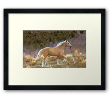War Chief  Framed Print
