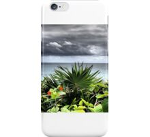 Mexican Storm iPhone Case/Skin