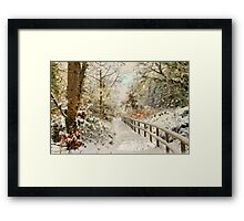 Winter delight Framed Print