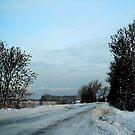 WinterLandScape by Els Steutel