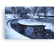 Frozen Ducks Canvas Print