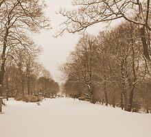Victorian Winter Wonderland Walk by Sandra Cockayne