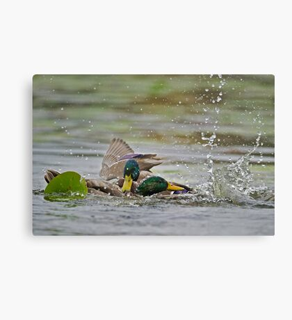 Attempted Drowning Canvas Print