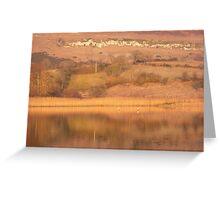 Autumnal lake Greeting Card