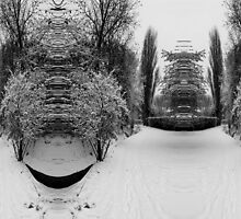 Bulging Snow by Richard Fox