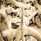 Piling up the snow by moensel
