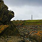 Cape Wickham Lighthouse - King Island by Greg Earl