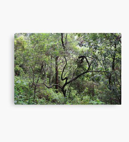 Sculpture in the Bush Canvas Print