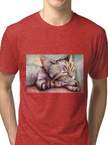 Sleeping Kitten Watercolor, Cute Cats Illustration Tri-blend T-Shirt