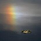 Rainbow in water by Michael  Herrfurth