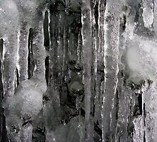 Ice Forest by MissMargaret