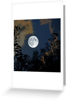 Moon Glo by Trish Mistric