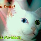 Is that Santa? by ♥⊱ B. Randi Bailey