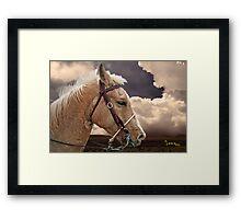 On The Prairie Framed Print