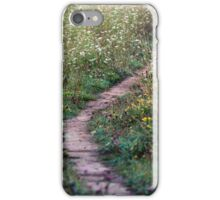 A Pretty Little Pathway iPhone Case/Skin