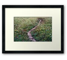 A Pretty Little Pathway Framed Print