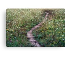 A Pretty Little Pathway Canvas Print