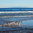 Malibu beach by loiteke