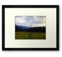 Alaska Marshlands Framed Print