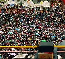 holy crowds batman. northern india by tim buckley   bodhiimages